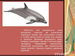 «Мягкость» или «волнистость» кожи дельфинов помогают им значительно уменьшать т