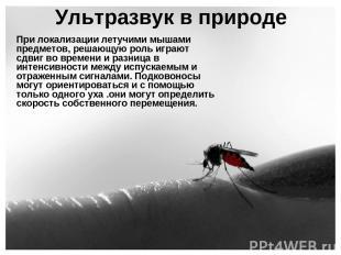 Ультразвук в природе При локализации летучими мышами предметов, решающую роль иг