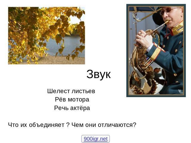 Звук Шелест листьев Рёв мотора Речь актёра Что их объединяет ? Чем они отличаются? 900igr.net