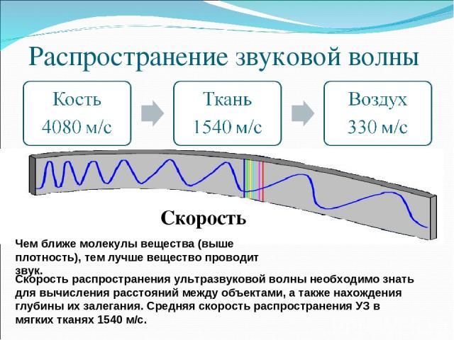 Распространение звуковой волны Скорость Чем ближе молекулы вещества (выше плотность), тем лучше вещество проводит звук. Скорость распространения ультразвуковой волны необходимо знать для вычисления расстояний между объектами, а также нахождения глуб…