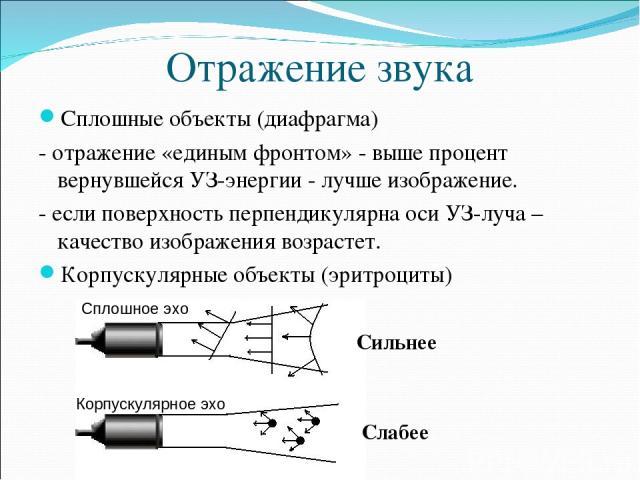 Отражение звука Сплошные объекты (диафрагма) - отражение «единым фронтом» - выше процент вернувшейся УЗ-энергии - лучше изображение. - если поверхность перпендикулярна оси УЗ-луча – качество изображения возрастет. Корпускулярные объекты (эритроциты)…