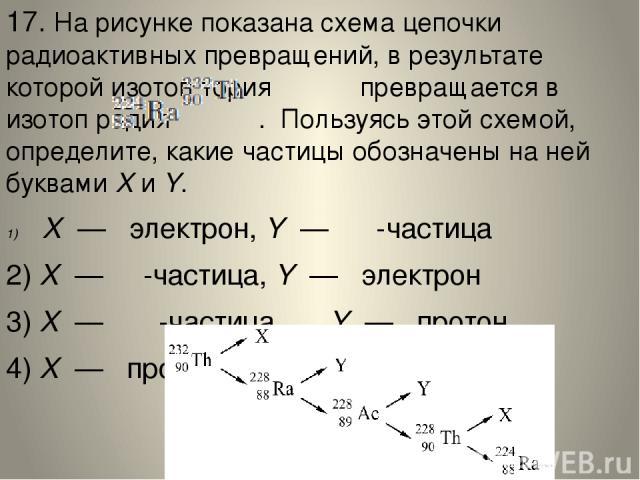 17. На рисунке показана схема цепочки радиоактивных превращений, в результате которой изотоп тория  превращается в изотоп радия . Пользуясь этой схемой, определите, какие частицы обозначены на ней буквамиXиY. X—  электрон,Y— α -частиц…