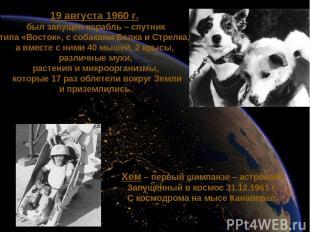 19 августа 1960 г. был запущен корабль – спутник типа «Восток», с собаками Белка