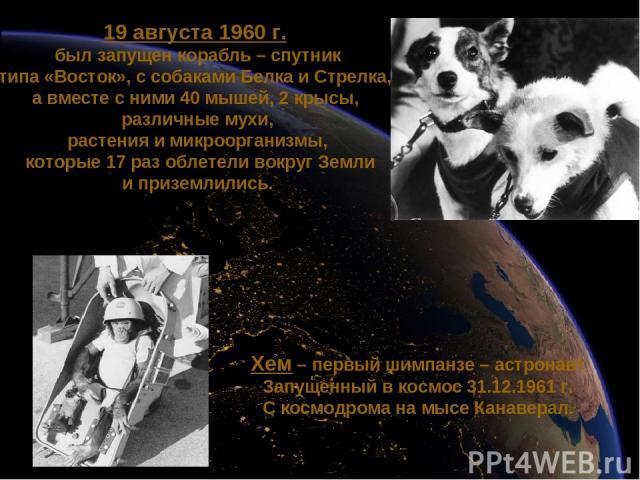 19 августа 1960 г. был запущен корабль – спутник типа «Восток», с собаками Белка и Стрелка, а вместе с ними 40 мышей, 2 крысы, различные мухи, растения и микроорганизмы, которые 17 раз облетели вокруг Земли и приземлились. Хем – первый шимпанзе – ас…
