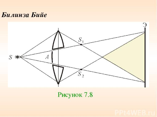 Билинза Бийе Рисунок 7.8