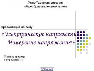 Усть-Таркская средняя общеобразовательная школа Презентация на тему: «Электричес