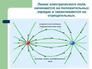Линии электрического поля начинаются на положительных зарядах и заканчиваются на