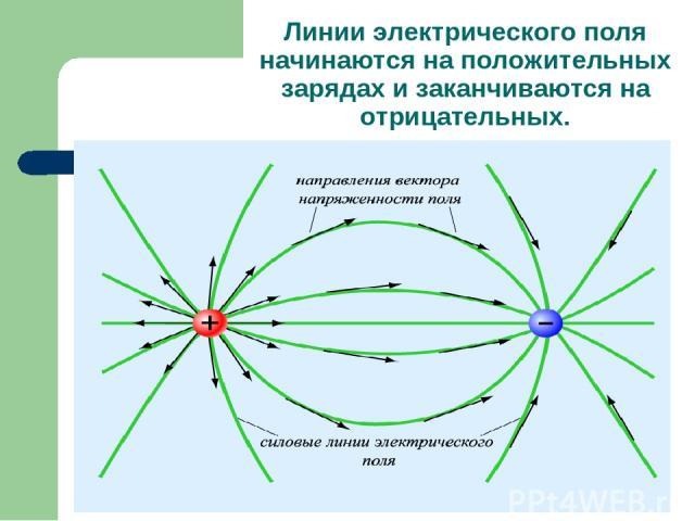Линии электрического поля начинаются на положительных зарядах и заканчиваются на отрицательных.