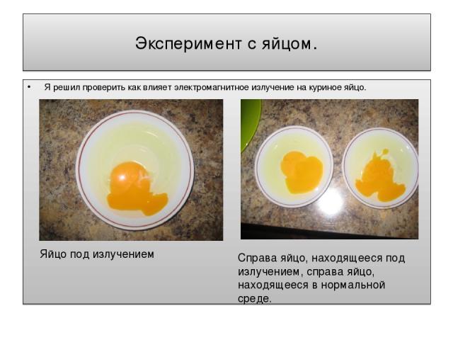 Эксперимент с яйцом. Я решил проверить как влияет электромагнитное излучение на куриное яйцо. Яйцо под излучением Справа яйцо, находящееся под излучением, справа яйцо, находящееся в нормальной среде.