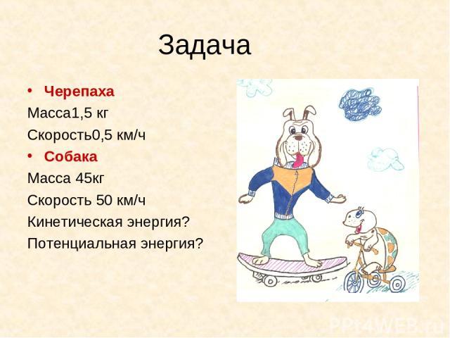 Задача Черепаха Масса1,5 кг Скорость0,5 км/ч Собака Масса 45кг Скорость 50 км/ч Кинетическая энергия? Потенциальная энергия?