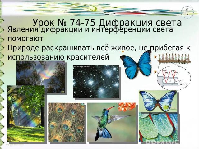 Урок № 74-75 Дифракция света Явления дифракции и интерференции света помогают Природе раскрашивать всё живое, не прибегая к использованию красителей 27