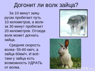 Догонит ли волк зайца? За 10 минут заяц-русак пробегает путь 10 километров, а во