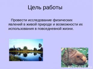 Цель работы Провести исследование физических явлений в живой природе и возможнос