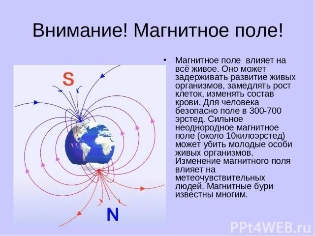 Внимание! Магнитное поле! Магнитное поле влияет на всё живое. Оно может задерживать развитие живых организмов, замедлять рост клеток, изменять состав крови. Для человека безопасно поле в 300-700 эрстед. Сильное неоднородное магнитное поле (около 10к…