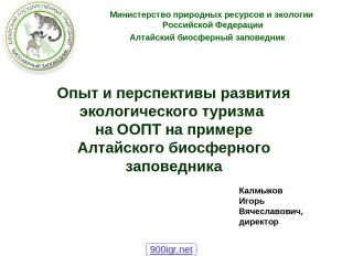 Опыт и перспективы развития экологического туризма на ООПТ на примере Алтайского