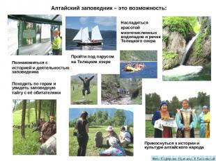 Алтайский заповедник – это возможность: Походить по горам и увидеть заповедную т
