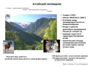 Алтайский заповедник Создан в 1932 г Объект ЮНЕСКО (с 1998 г) В пятёрке среди за