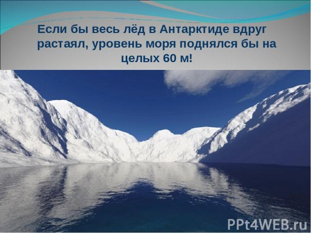 Если бы весь лёд в Антарктиде вдруг растаял, уровень моря поднялся бы на целых 60 м!