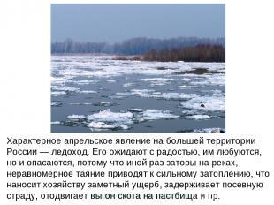 Характерное апрельское явление на большей территории России — ледоход. Его ожида