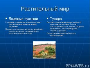 Растительный мир Ледяные пустыни К суровым условиям арктических пустынь приспосо