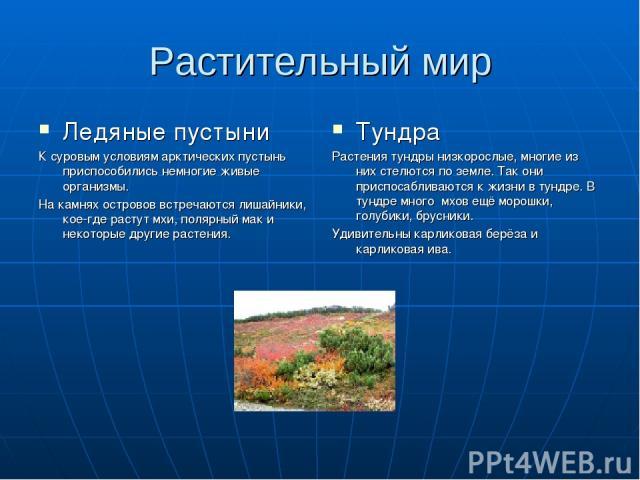 Растительный мир Ледяные пустыни К суровым условиям арктических пустынь приспособились немногие живые организмы. На камнях островов встречаются лишайники, кое-где растут мхи, полярный мак и некоторые другие растения. Тундра Растения тундры низкоросл…