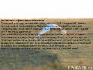 Физико-географические особенности Природный комплекс заповедника представляет со