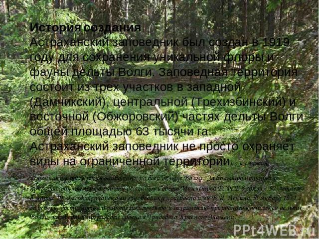 История создания Астраханский заповедник был создан в 1919 году для сохранения уникальной флоры и фауны дельты Волги. Заповедная территория состоит из трех участков в западной (Дамчикский), центральной (Трехизбинский) и восточной (Обжоровский) частя…