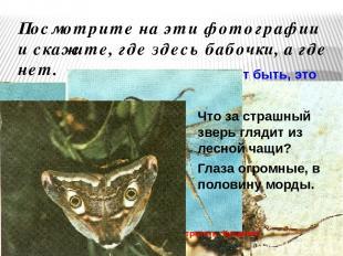 Посмотрите на эти фотографии и скажите, где здесь бабочки, а где нет. Может быть