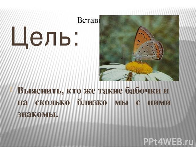 .. .. Цель: Выяснить, кто же такие бабочки и на сколько близко мы с ними знакомы.