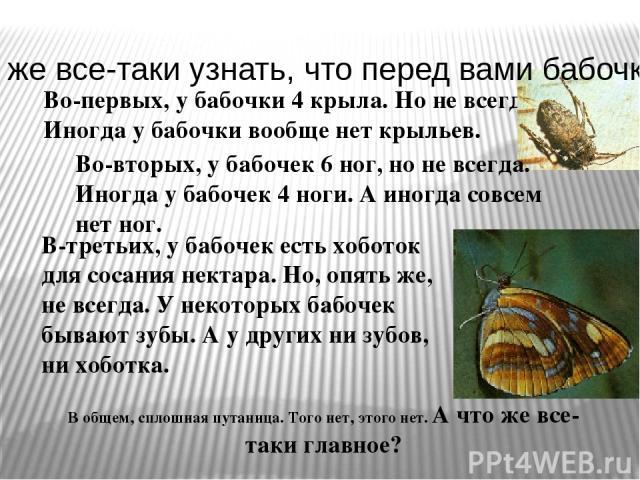 Во-первых, у бабочки 4 крыла. Но не всегда. Иногда у бабочки вообще нет крыльев. Во-вторых, у бабочек 6 ног, но не всегда. Иногда у бабочек 4 ноги. А иногда совсем нет ног. В-третьих, у бабочек есть хоботок для сосания нектара. Но, опять же, не всег…