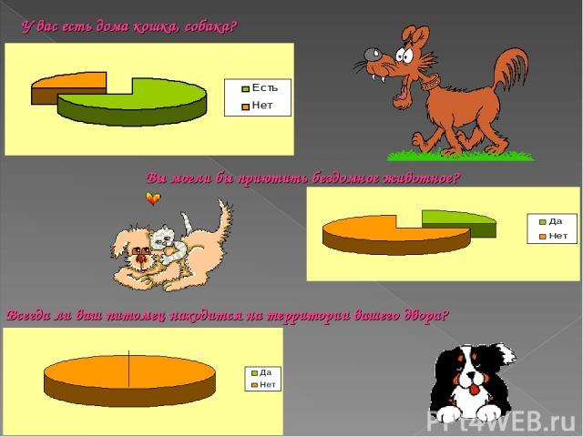 У вас есть дома кошка, собака? Вы могли бы приютить бездомное животное? Всегда ли ваш питомец находится на территории вашего двора?