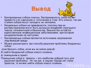 Вывод Беспризорные собаки опасны. Беспризорность собак может привести к их одича