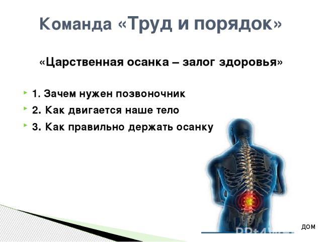 Как двигается наше тело Мышцы способны сокращаться и приводить наше тело в движение. Их в организме человека около 600 – больше чем костей. Мышцы могут сокращаться и расслабляться. Мышцы прикрепляются к костям с помощью сухожилий. Сокращение мышц пр…