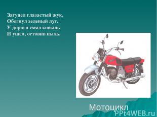 Мотоцикл Загудел глазастый жук, Обогнул зеленый луг. У дороги смял ковыль И ушел