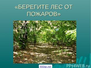 «БЕРЕГИТЕ ЛЕС ОТ ПОЖАРОВ» 900igr.net