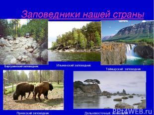Заповедники нашей страны Баргузинский заповедник. Таймырский заповедник Ильменск