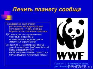 """Гринпис"""" и """"Всемирный фонд дикой природы"""" (WWF) Государства заключают различные"""