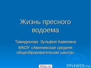 Жизнь пресного водоема Тажидинова Зульфия Кавеевна МКОУ «Аминевская средняя обще