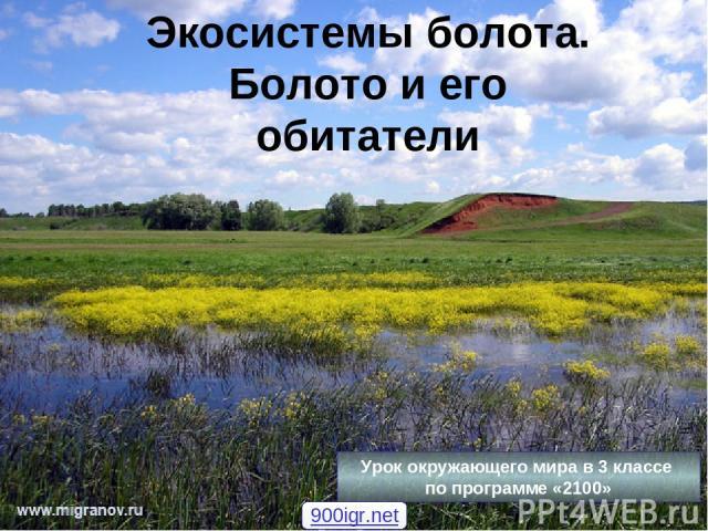 Экосистемы болота. Болото и его обитатели Урок окружающего мира в 3 классе по программе «2100» 900igr.net