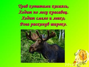 Трав копытами касаясь, Ходит по лесу красавец. Ходит смело и легко, Рога раскину