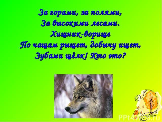 За горами, за полями, За высокими лесами. Хищник-ворище По чащам рыщет, добычу ищет, Зубами щёлк! Кто это?