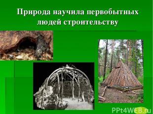 Природа научила первобытных людей строительству