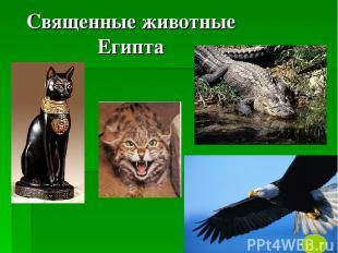 Священные животные Египта