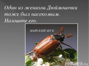 Один из женихов Дюймовочки тоже был насекомым. Назовите его. МАЙСКИЙ ЖУК