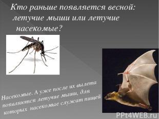 Кто раньше появляется весной: летучие мыши или летучие насекомые? Насекомые. А у