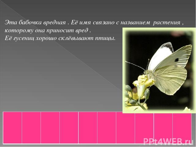Эта бабочка вредная . Её имя связано с названием растения , которому она приносит вред . Её гусениц хорошо склёвывают птицы.