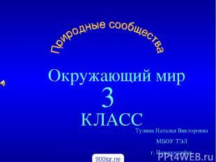 Окружающий мир КЛАСС 3 Тулина Наталья Викторовна МБОУ ТЭЛ г. Новороссийск 900igr