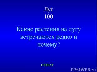 Луг 100 Какие растения на лугу встречаются редко и почему? ответ