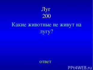 Луг 200 Какие животные не живут на лугу? ответ