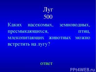 Луг 500 ответ Каких насекомых, земноводных, пресмыкающихся, птиц, млекопитающих